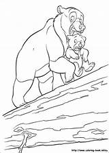 Coloring Bear Brother Pages Disney Colouring Horse Info Printable sketch template