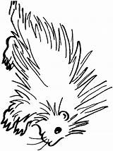 Porcupine Coloring Printable Animals Clipart Animal Sheet Sheets Clip Template Sketch Cliparts Library Town sketch template