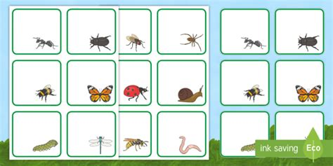 * New * Minibeasts Themed Editable Drawer, Peg, Name Labels