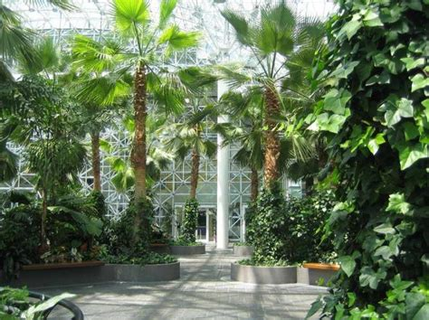 the best indoor gardens in chicago