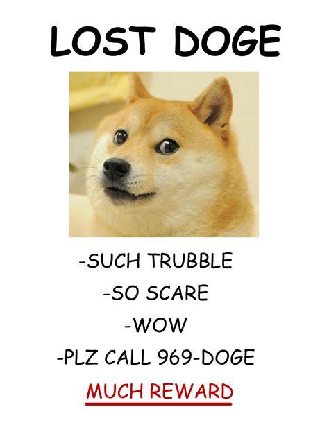 Lost Doge Meme - lost doge wolf team