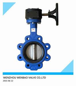 China Lug Type Cast Steel Butterfly Valve Dn125 With