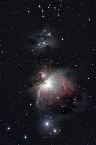 M42 Orion Nebula View Bionuclars - Pics about space