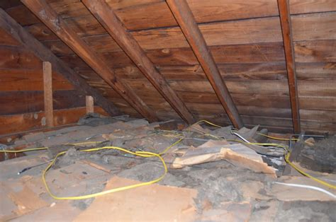 attic insulation removal  professionals mold solutions