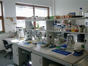 File:Laboratorium-biologia-molekularna.jpg - Wikimedia Commons
