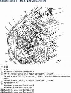 2004 Cadillac Cts Engine Diagram  U2022 Downloaddescargar Com