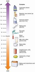 Nutitional Ph Levels And Natural Indicators