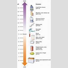 Nutitional Ph Levels And Natural Indicators Infobarrel