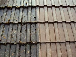 Durchsichtige Dachplatten Hagelsicher : referenz foto 5 ~ Whattoseeinmadrid.com Haus und Dekorationen