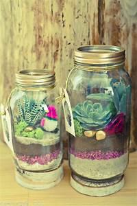 Sukkulenten Im Glas Pflanzen : pflanzen im glas do it yourself pflanzen garten und sukkulenten ~ Eleganceandgraceweddings.com Haus und Dekorationen