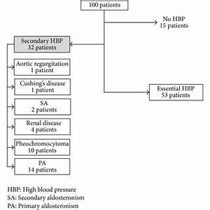 Diagnostic workup of the patients. HBP, high blood ...