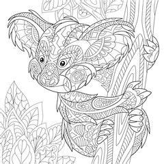 zentangle stylized cartoon koala bear sitting  tree