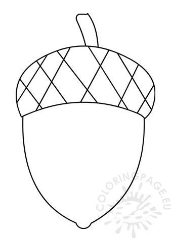 acorn template  printable coloring page