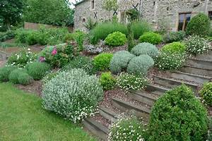pinterest o le catalogue d39idees With charming idee de plantation pour jardin 9 amenager une rocaille amenagement de jardin