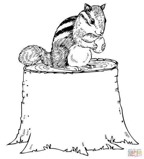 Boomstam Kleurplaat by Chipmunk Nut On Tree Stump Coloring Page Free