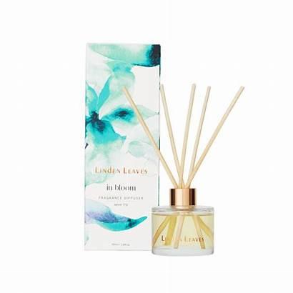Diffuser Fragrance Aqua Lily Lasting