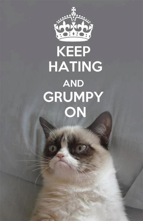 Grumpy Cat Coma Meme - 819 best images about grumpy cat on pinterest gift quotes jokes and memes humor