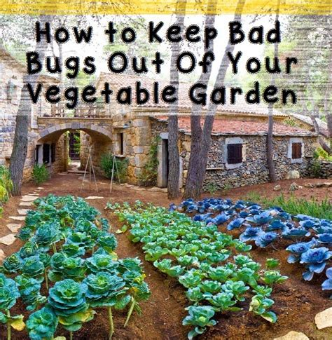 how to keep bad bugs out of your vegetable garden organic