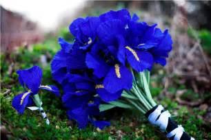 blue wedding flowers wedding flower alternatives bridal bouquets from etsy cobalt blue paper onewed