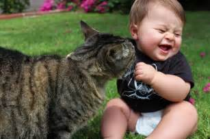 babies and cats 20 adorable photos proving that your need a cat