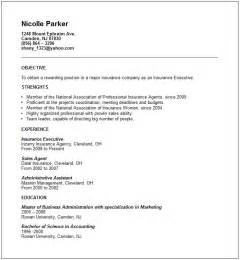 Resume No Experience by Bank Teller Resume Sle No Experience