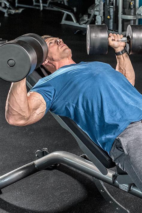 beginners chest workouts  mass
