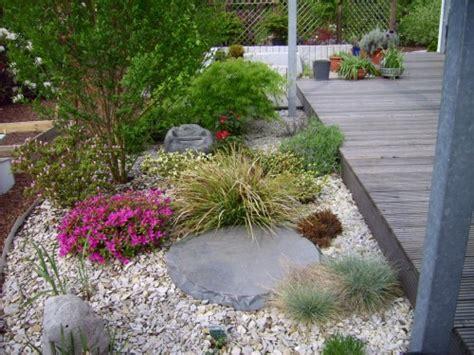 Gartengestaltung Mit Steinen Und Gräsern 3537 by Sachiko 180 S Kleines Garten 187 Rhododendron Bl 252 Te Im Kiesbeet