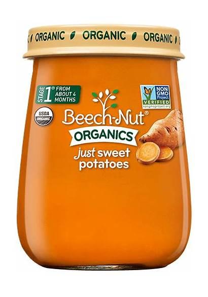 Sweet Potatoes Nut Stage Beech Jar Jars