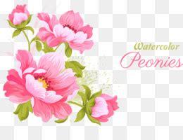 vektor  gratis laurel karangan bunga bay laurel