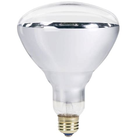 250 watt heat l philips 250 watt 120 volt incandescent br40 heat l