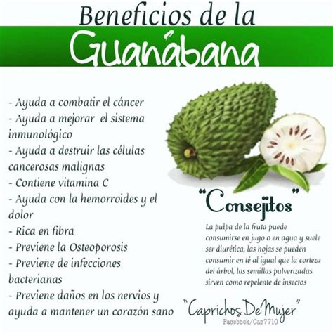 propiedades de la guan 225 bana salud fruta q cura el cancer fruta q cura el cancer the world s catalog of ideas