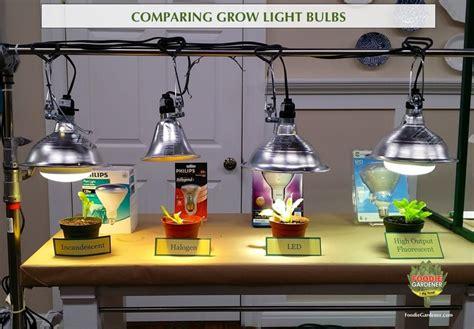 best grow lights for seedlings grow lights for beginners start plants indoors the