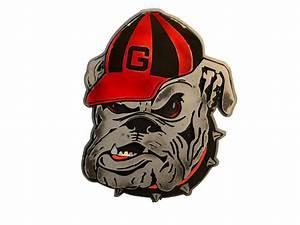 University of Georgia Bulldog Mascot – Delta-13