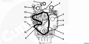 Serpentine Belt Routing On A 3 9 Cummins Engine That Is In