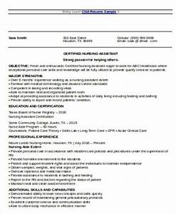 Nursing Resume Objective Sample 8 Examples in Word PDF