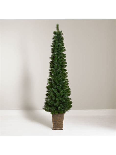 john lewis partners pencil pine potted pre lit christmas