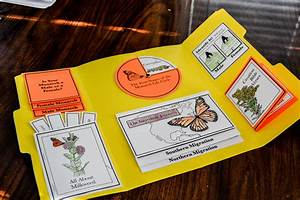 Your Backyard Monarch Lapbook Crowe39s Nest Media