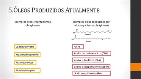 Produção De óleos E Gorduras Via Microbiana