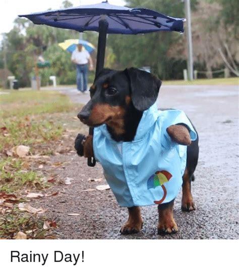 Rainy Day Meme - 25 best memes about rainy day rainy day memes