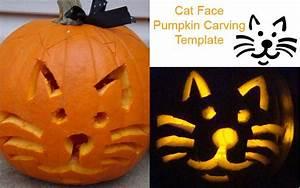 Cat, Face, Pumpkin, Carving, Template, Cat, Halloween, Pumpkin