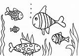 Coloring Fish Pages Aquarium Fishing Swimming Rod Drawing Printable Tank Aloha Print Butterfly Water Fishtank Cranberry Drawings Getcolorings Cute Pole sketch template