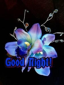 Good night! | Goodnight | Pinterest | Night and Good night