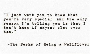 The Perks of Being a Wallflower | Under The Night Starry Sky