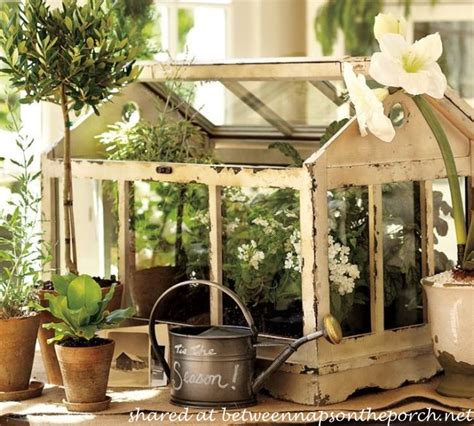 indoor tabletop terrarium greenhouse quotes