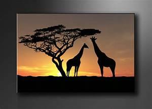Kuh Bilder Auf Leinwand : leinwand bilder fert gerahmt afrika 80cm xxl 3 4034 ~ Whattoseeinmadrid.com Haus und Dekorationen