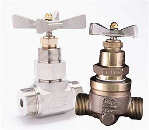 A Complete Guide To Globe Valve Types And Parts