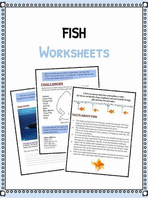 fish facts  worksheets kidskonnect