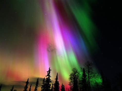 when is the northern lights 24 amazing auroras borealis australis