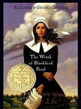 Image result for Witch of Blackbird Pond