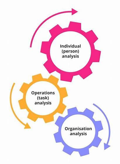 Development Needs Training Identify Employee Identifying Employees